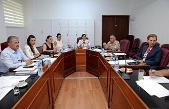 Komite, ruh sağlığı yasa tasarısını görüştü