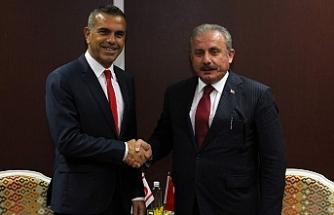 """Şentop: """"Türkiye'nin dostları ve kardeşleri tarafından doğru anlaşılmasını istiyoruz"""""""