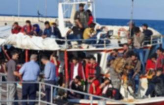 Güneyde kaçak mülteci olayında artış