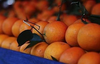 Koronavirüsten Korunmak İçin Aşırı Tüketilen C Vitamini, Mesaneye Zarar Veriyor