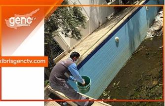 Alsancak'ta sivrisinekle mücadele kapsamında üreme yerlerini ilaçlanıyor