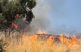 Kırıkkale köyü ve Hamitköy'de arazi yangını meydana geldi