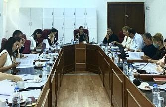 Özel gereksinimli bireylerin eğitimi yasa tasarısı'nın komitedeki görüşmesi devam ediyor