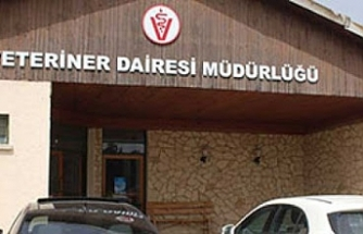 """Veteriner Dairesi'nden """"itlaf"""" açıklaması ve sosyal medyadaki iddialara yanıt"""