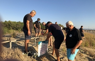 Herdaimdostlar Kum Zambakları'nı koruma çitine bakım yaptı