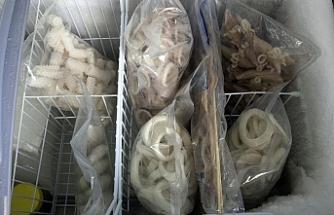 Çin'de, Rusya'dan ithal edilen dondurulmuş kalamarlarda koronavirüse rastlandı