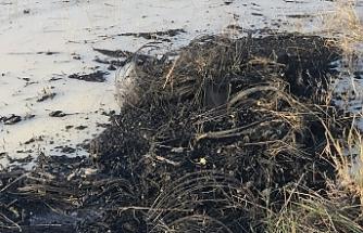 Gölet içerisinde yanık lastik atıkları