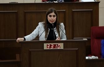 Dilekçe ve Ombudsman Komitesi Başkanlığına İzlem Gürçağ Altuğra seçildi