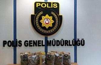 Haspolat'ta bir evde 2,6 kilogram hintkeneviri ele geçirildi