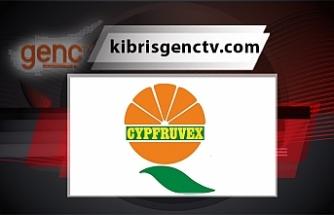 Cypfruvex, valensiya ürününü değerlendirmemiş üreticilerden müracaat kabul edecek