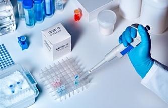 YKS sınavı için PCR testi istenecek