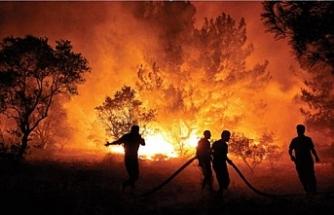 Dünyanın dört bir yanında yangınlar