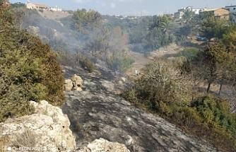Tablo açıklandı:  14 dönümlük alan yandı