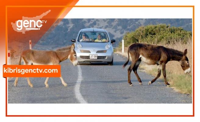 Bu yolları kullanan sürücüler dikkat!