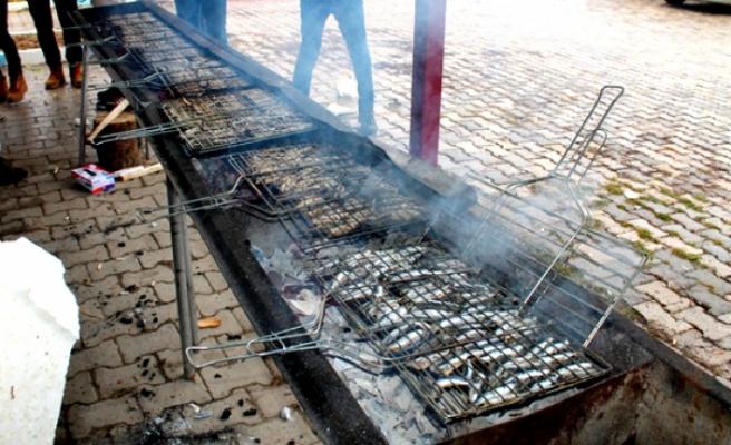 Hamsi Festivali pazar günü