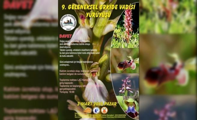 """""""Orkide Vadisi Orkide Gözlem Yürüyüşü""""nün bu yıl 3 Mart Pazar günü gerçekleşecek"""
