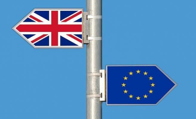 İngiltete'de hükümete Brexit darbesi