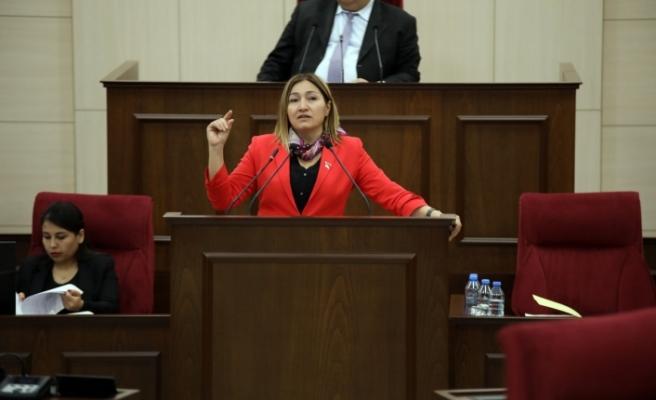 """Öztürk: """"Ben Sayın Bakanın 'köpeği kayboldu, Güney Kıbrıs'tan uçtu' haberlerini görmek istemiyorum"""""""