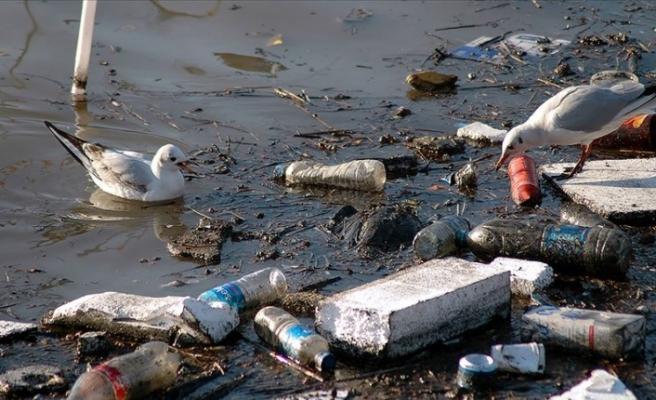 AP tek kullanımlık plastik ürünleri yasakladı