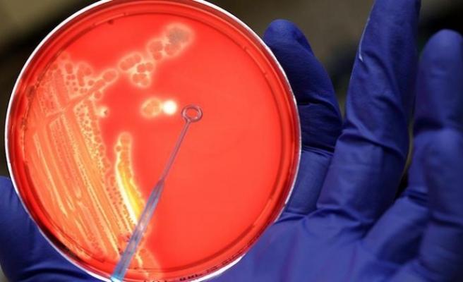 Bakterilerin havada binlerce kilometre gidebildiği tespit edildi