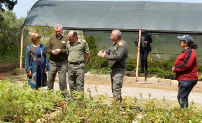 Meral Akıncı'dan Orman Dairesi Güzelyurt Bölge Müdürlüğü'ne teşekkür ziyareti