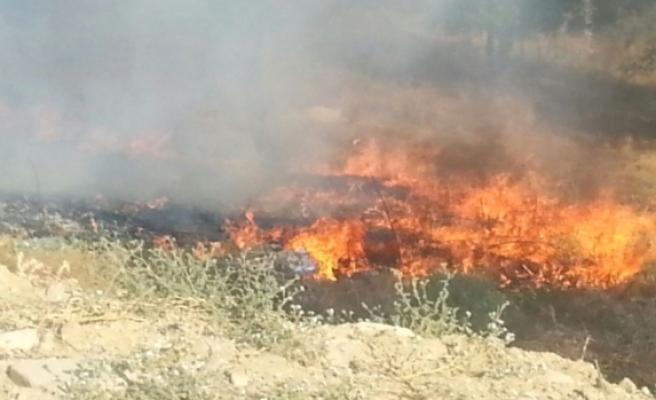 Aydınköy'de arazi yangını