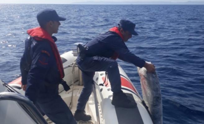 Denizde aşırı yükten batan tekneden 1.4 ton uyuşturucu ele geçirildi