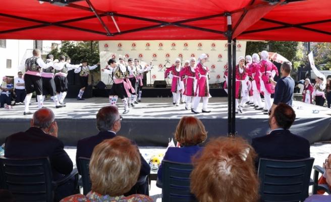 Kıbrıs İpek Koza 14. Festivalisürüyor
