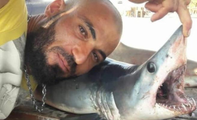 Gazimağusa sahilinde köpek balığı