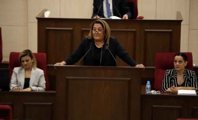 Meclis'te 'vatan haini' tartışması