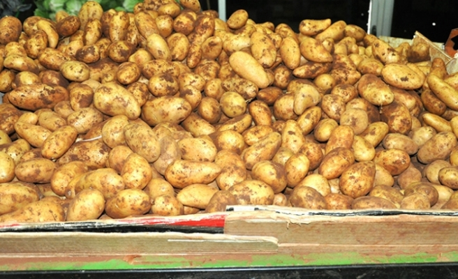 Patates üreticileri bugün ödeniyor