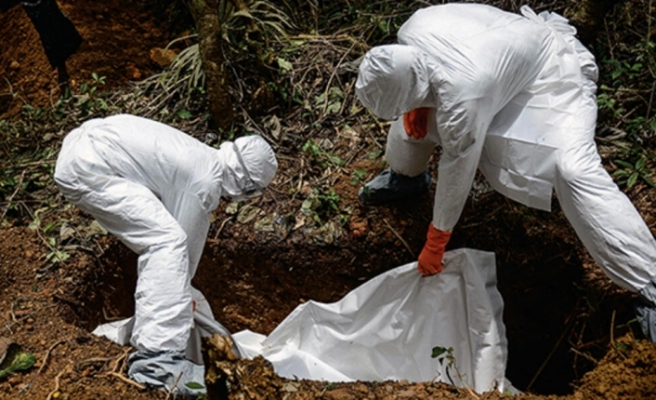 Ebola salgını nedeniyle küresel acil durum ilanı