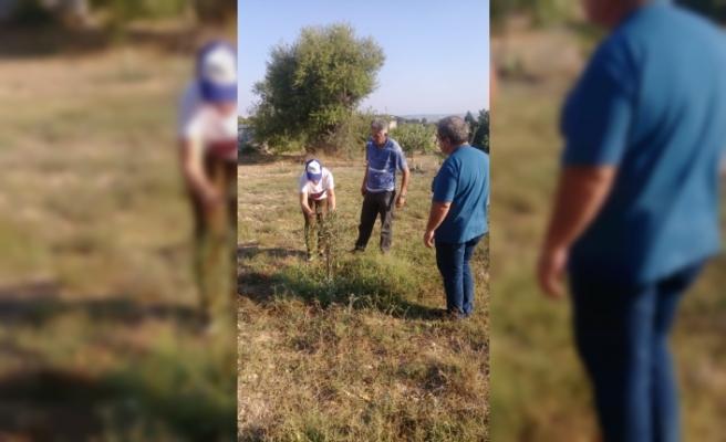 Tarım Dairesi eğitimleri Hisarköy'de