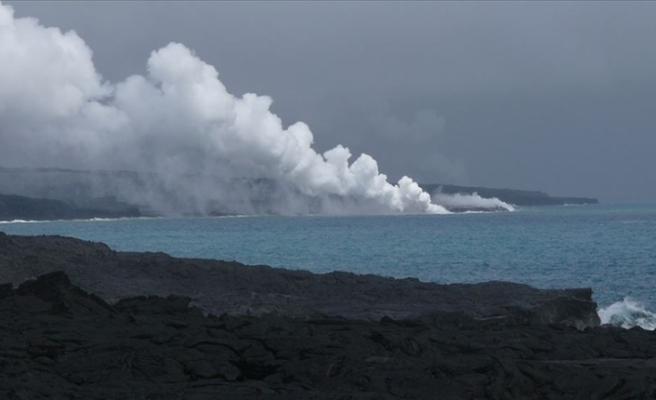 Trilyonlarcası bir araya gelince yüzen adaya benziyor