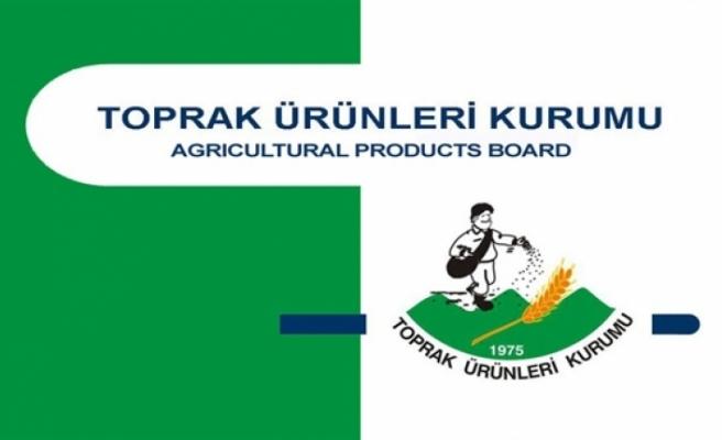 Arpa ve tohumluk materyali buğday satışına devam ediyor