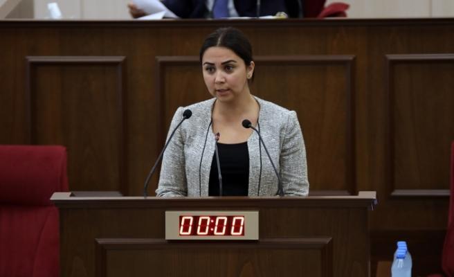 """Baybars: """"Türkiye vatandaşlarına bu tüzük ile sağlanması gereken kolaylıkların sağlanacak"""""""