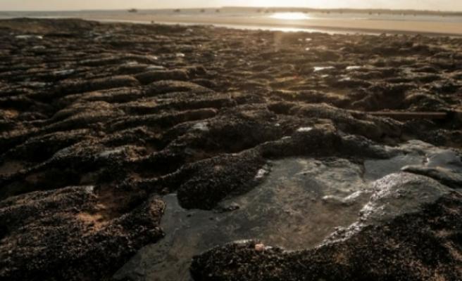 Brezilya'daki petrol sızıntısı kuzeydoğuda 150'den fazla plajı kirletti