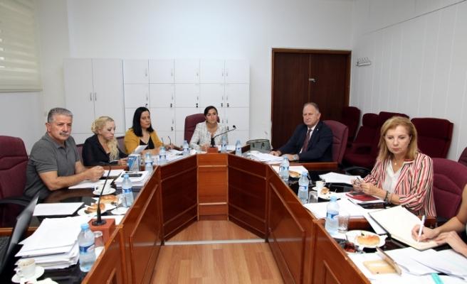 Kalkınma Bankası (Değişiklik) Yasa Tasarısı komitede oybirliği ile kabul edildi
