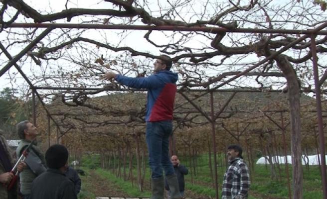 Tarım Dairesi eğitim çalışmalarına Hisarköy ile devam edecek