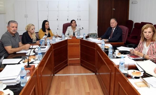 Cumhuriyet Meclisi, İdari, Kamu ve Sağlık İşleri Komitesi,  toplandı