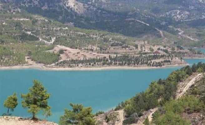 Geçitköy baraj bölgesine yeni fidanlar