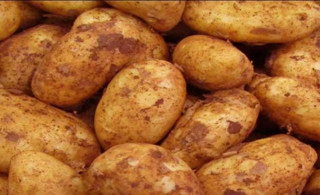 Sonbahar Patates alanları için cuma mesai bitimine kadar itiraz edilebilecek