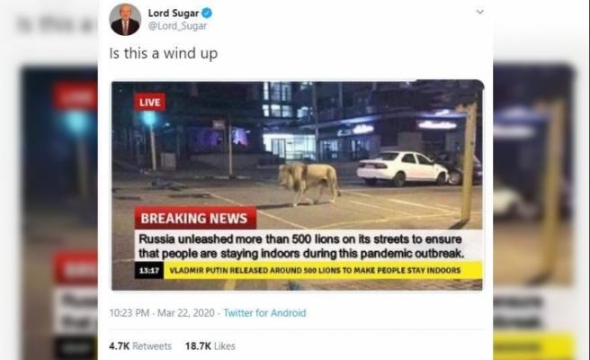 Putin'in İnsanların evde kalması için 800 aslanı sokağa saldığı iddiası