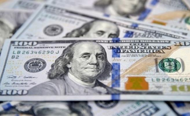 Dolar, TL karşısında son 20 ayın en yüksek seviyesinde