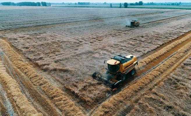 Yeni dünya düzeninde gıda ve tarım çok daha önemli hale gelecek