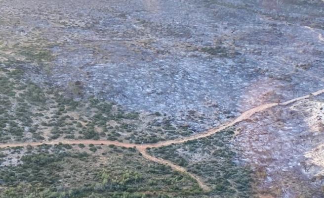 5 Bin hektardan fazla alanın yandığı tahmin ediliyor