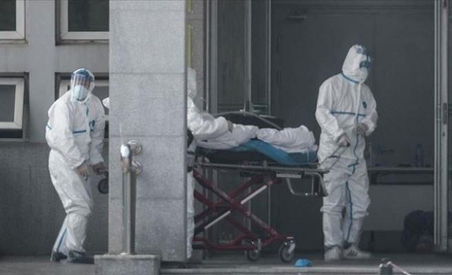Dünya genelinde Kovid-19'dan ölenlerin sayısı 250 bini aştı