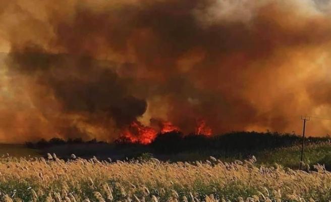 Güneydeki yangınlar düşündürücü