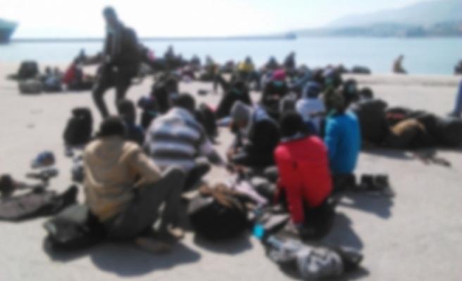 Güneyde 13 bin 650 sığınma başvurusu
