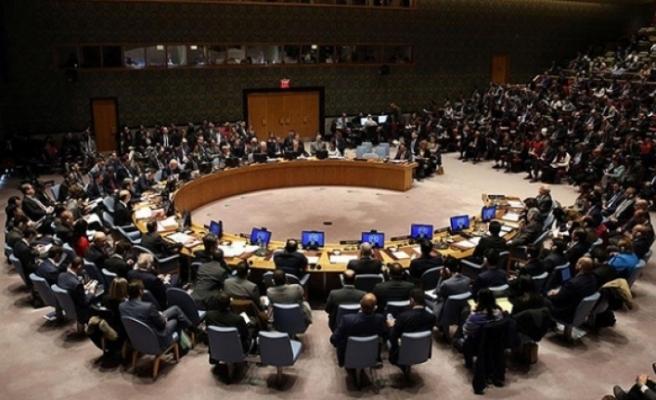 İrlanda ve Norveç BM Güvenlik Konseyine geçici üye seçildi